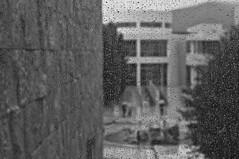 dancing umbrellas (hafual) Tags: california blackandwhite bw window rain wall museum umbrella grey la losangeles fenster wand grau drop sw gettycenter westcoast regen raindrop reise tropfen kalifornien thegetty worldtour regenschirm regentropfen weltreise westkste schwarzweis triparoundtheworld