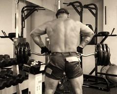 workout in florida - march 2012 (Farmerbaer) Tags: buff workout sturdy brawny muscled marsum krafttraining workershorts swisshunk