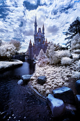 Walt Disney World Winter Wonderland? (Tom.Bricker) Tags: nikond70 wideangle disney disneyworld mickeymouse infrared waltdisneyworld magickingdom waltdisney ultrawideangle infraredphotography infraredphotos disneyphotos nikond70infrared wdwfigment tombricker disneyinfrared