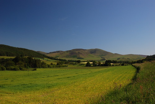 Broughton Heights