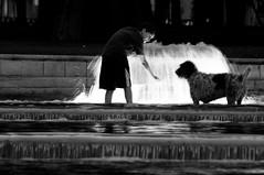 114 (vitor_barao) Tags: madrid espanha europa cachorro viagem fonte menino banho poa viajar calor madri 2011 conexo
