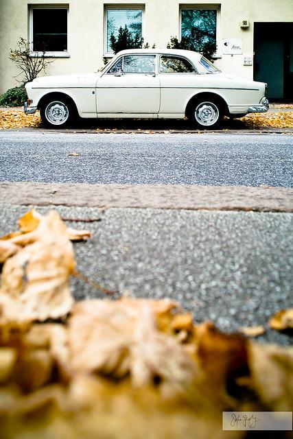 Volvo Leaves