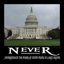 stupid Congress