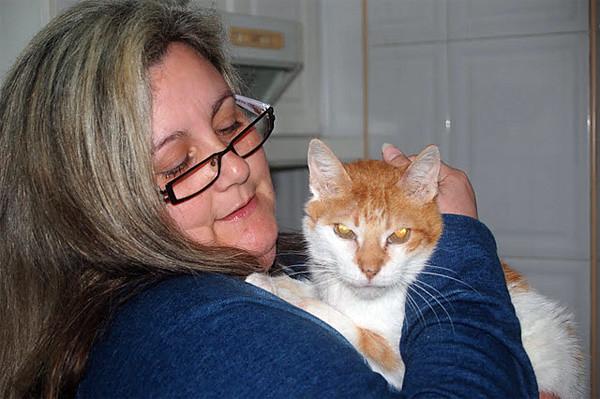 APADRINA al gatito que tú quieras