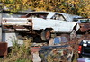 Plymouth Road Runner. Mopar Graveyard