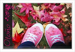 Dom inguete (V)... otoal (Marisa Gabn (*)) Tags: parque hojas galicia otoo zapatillas acorua betanzos nikond60 marisagabn 321mil dominguetemg