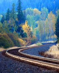 S-Curve  Get Pushed Round 11 (misst.shs) Tags: railroad fall train nikon idaho engines depot challenge sandpoint northidaho colburn burlingtonnorthersantafe getpushed