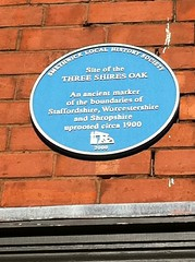 Photo of Blue plaque number 7965