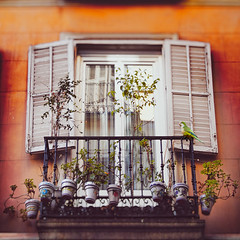 Better keep yourself clean and bright; you are the window through which you must see the world. (www.juliadavilalampe.com) Tags: madrid flowers espaa plants window del spain europa ciudad clean pots openwindow spanish typical papagayo manzanares idlico