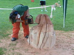 Carving Wood with a Chainsaw (mikecogh) Tags: wood sculpture industrial mask mechanical display chainsaw overalls publicart katikati