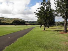 Turtle Bay Colf Course 113