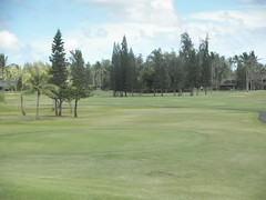 Turtle Bay Colf Course 211