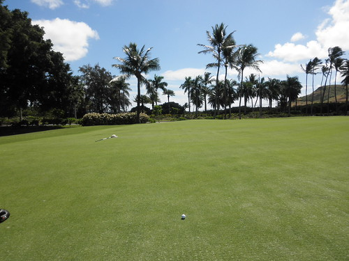 Turtle Bay Colf Course 156