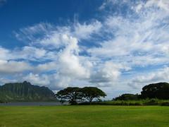paradise (redjoe) Tags: hawaii oahu redjoe joehorvath