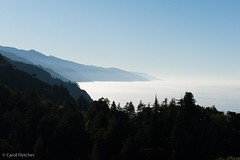 Big Sur (carol.fletcher) Tags: california highwayone bigsur pacificocean pacificcoast nepenthe carolfletcher