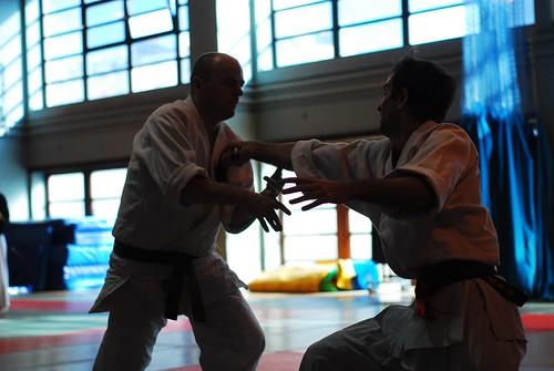 6299415895 8b66de34de London & Hove Shodokan Aikido Festival 2011