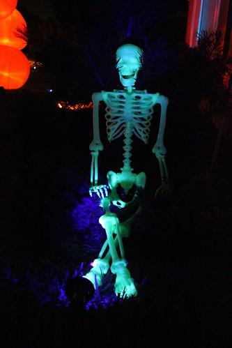 Glow-in-the-dark skeleton