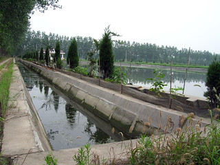Aquaculture, China. Photo by Hong Meen Chee, 2006