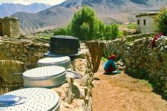 A Day in the Life of a Ladhaki (Hema Narayanan) Tags: leh ladakh nationalgeographic worldnomads lifeinladakh hemanarayanan faithofladakhis ladakhihome finalshortlistofworldnomadscontest 2011travelscholarship 2011worldnomadsscholarship 2011nationalgeographic