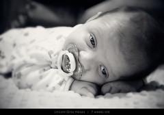 Lincoln - 7weeks (@lifebypixels) Tags: portrait blackandwhite baby nikon availablelight ambientlight noflash lincoln highiso tummytime postprocessing d7000