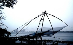 Sitting Still.. (RanadipRoy) Tags: ocean life old city trip blue trees light sea india holiday fish history net water lines rain birds wonderful fun boats evening coast wooden amazing still twilight fishing ancient nikon waves sitting technology tour dusk branches exploring traditional horizon shoreline wave kerala tourist bamboo line explore coastal brine salty rainy shore enjoy hanging historical strings perched resting ropes marvel crows majestic incredible hue cochin kochi timeless rains moist magnificient cantilever fortkochi nikor chinesefishingnet arabianocean nikond5000