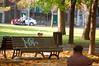 Parc La Fontaine (tiagovaz) Tags: canada d50 nikon quebec montreal 18105mm occuponsmontreal