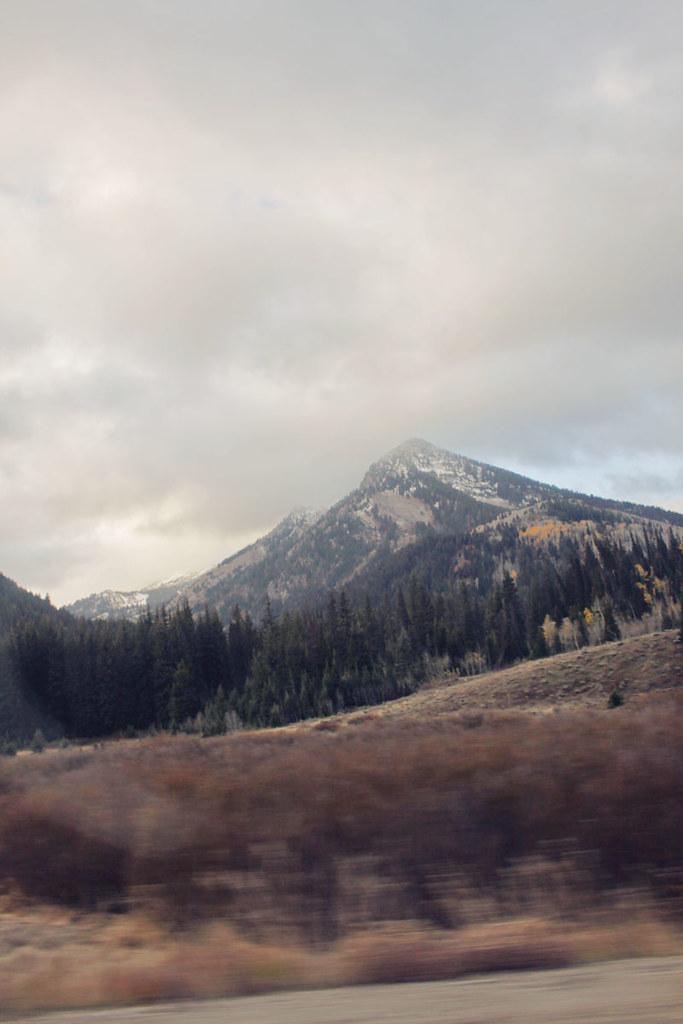 Salt Lake City 8