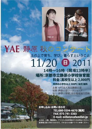 yaechirashi_forall_20111101