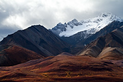 Polychrome Pass Glacier (Mitch Seaver) Tags: autumn mountains fall nature alaska canon landscape seasons fallcolors interior scenic places glacier fallfoliage wilderness denali tundra alaskarange autumncolor denalinationalpark polychromepass interioralaska denalinp doubleniceshot tripleniceshot mygearandme mygearandmepremium mygearandmebronze mygearandmesilver polychromeglaciers