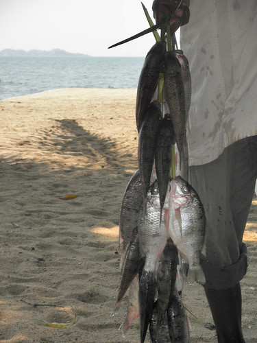 Fish for sale at Lake Malawi, Mangochi, Malawi. Photo by Asafu Chijere, 2010