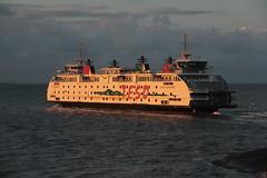 De boot naar Texel in avondgloren (Windmolen11) Tags: ferry boot texel denhelder teso bootdienst