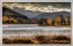 Autumn Loch Explored 28/11 (Bill McKenzie / bmphoto) Tags: autumn eos best 5d mkii cairngorm lochpityoulish explored masterclasselite