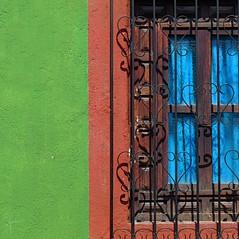 (msdonnalee) Tags: verde green cortina window ventana iron groen fenster curtain wroughtiron vert grill finestra mexique janela ironwork grün fenêtre stucco zielony mexcio mexiko verd messico finestre venster grön berde зеленый grøn berdea vihreä 青色 أخضر zelený зелен greenstucco πράσινο हरा wroughtironwindowgrill photosfromsanmigueldeallende xanhlục fotosdesanmigueldeallende midori緑 ירוקhijau