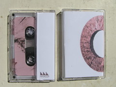 Golden Retriever - Emergent Layer - NNA Tapes