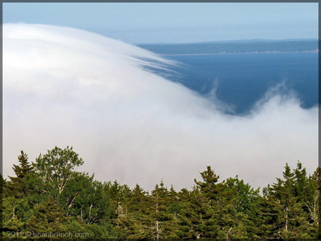 P1150937_fog_bay_of_fundy