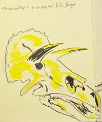 cuaderno5