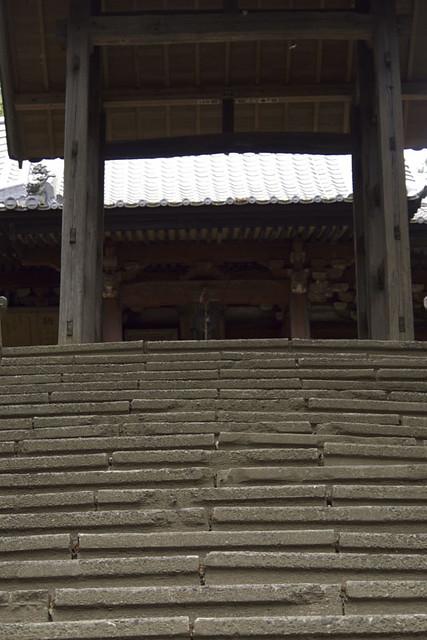 110503_095400_太田_園福寺_十二所神社