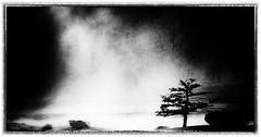 Fog Rising (josefontheroad) Tags: topshots idream altaymountains northwestmongolia natureselegantshots saariysqualitypictures fleursetpaysages lelitedespaysages