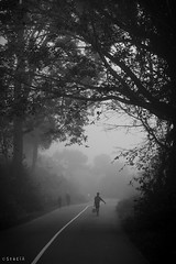 An early walk to work (stalin.sm) Tags: mist kerala wayanad mistymorning vythri padinjarathara