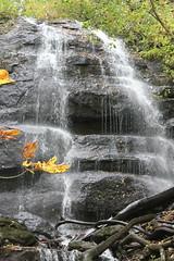 奥入瀬の滝(4)