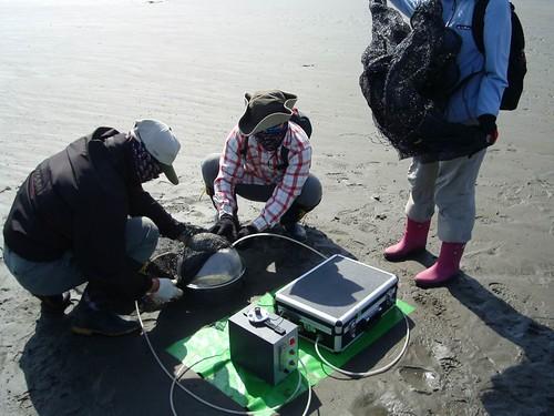 研究人員在高美濕地進行相關研究。(圖片來源:特生中心)