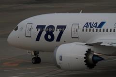 B787-8乗員習熟飛行と羽田空港空の日イベント