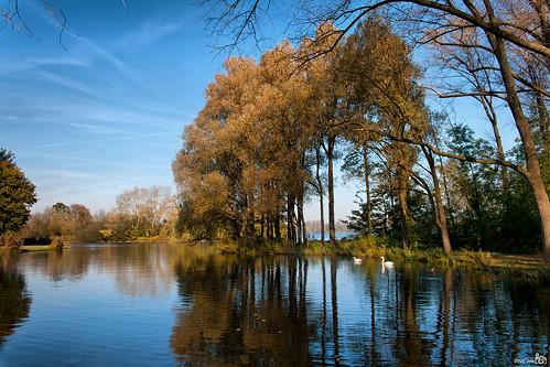Autumn, Kralingse Plas by BraCom (Bram)