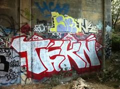 Tekn (Kodak Views) Tags: graffiti bay marin north bugs area gods graff cels idc tekn
