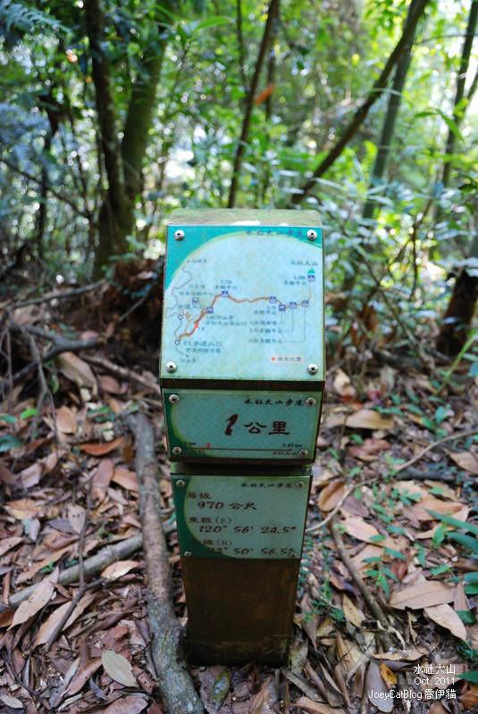 2011_1026水社大山DSC_2927
