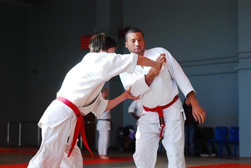 6299401099 436b91673d London & Hove Shodokan Aikido Festival 2011