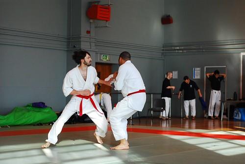 6299940860 6eb314faef London & Hove Shodokan Aikido Festival 2011