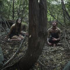 Ravens. (David Talley) Tags: trees tree halloween forest scary woods creepy spooky 365 raven ravens edgarallenpoe spook