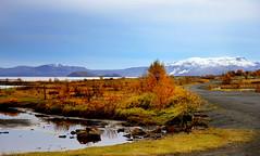 ingvellir (Anna.Andres) Tags: iceland ingvellir sland redmatrix sailsevenseas canoneosrebelt2i annagumundsdttir