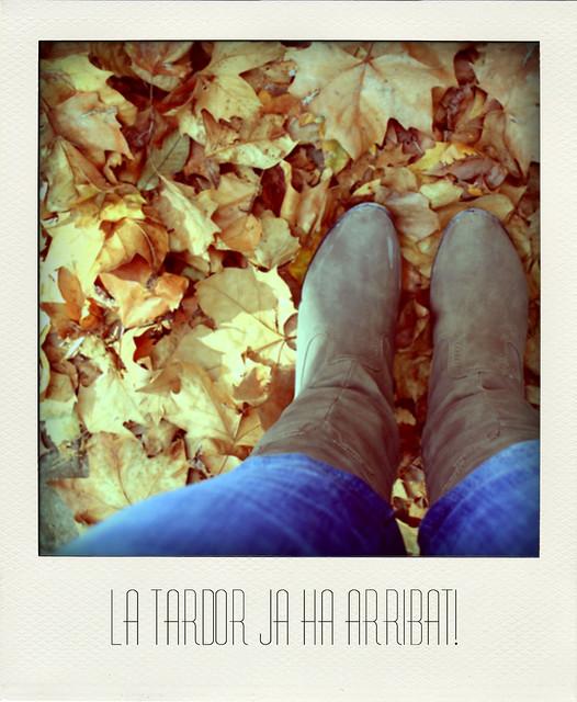 El otoño ya ha llegado!